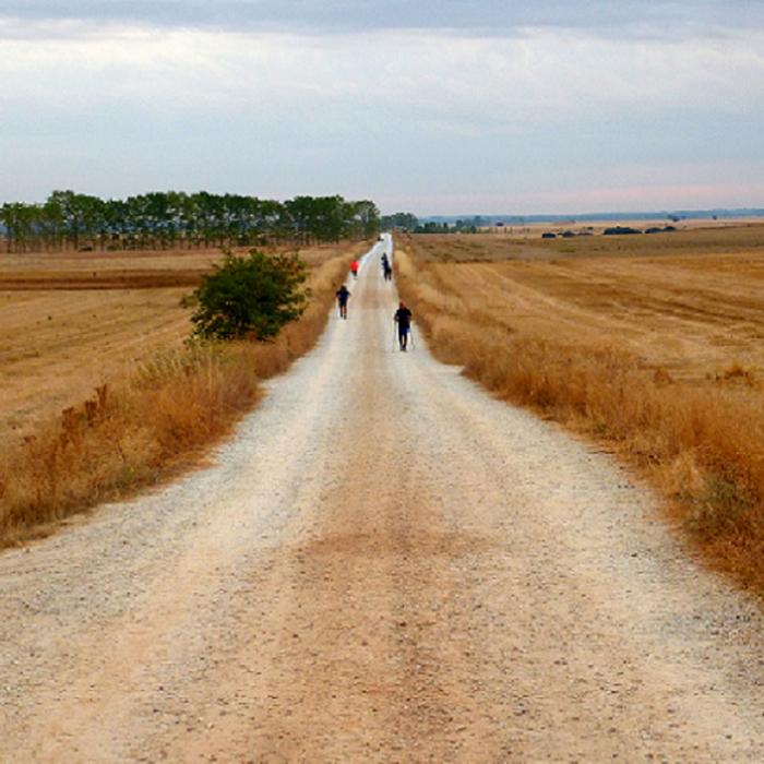 carroussel-chemin